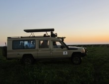 Safari Group Joining Itineraries